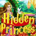 لعبة أشياء الأميرة المخفية