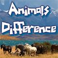 لعبة إختلافات الحيوانات الأليفة